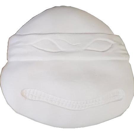 Plaster Paint Turtle