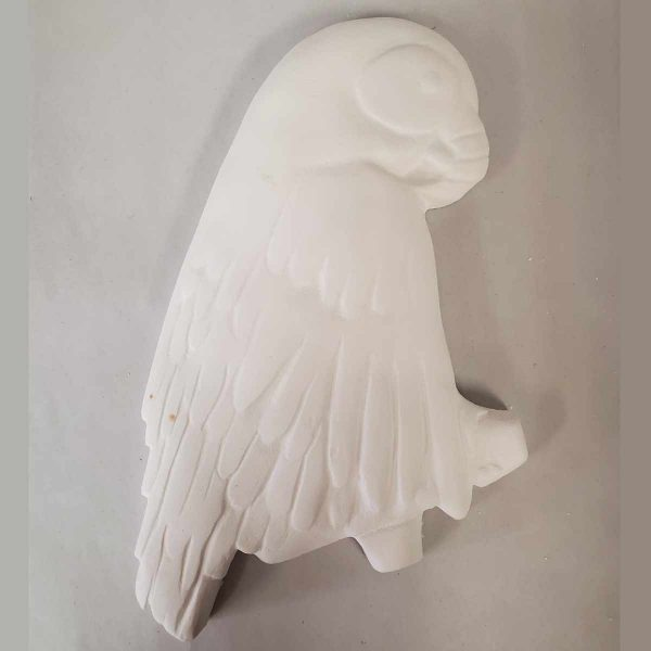 Plaster Paint Parrot