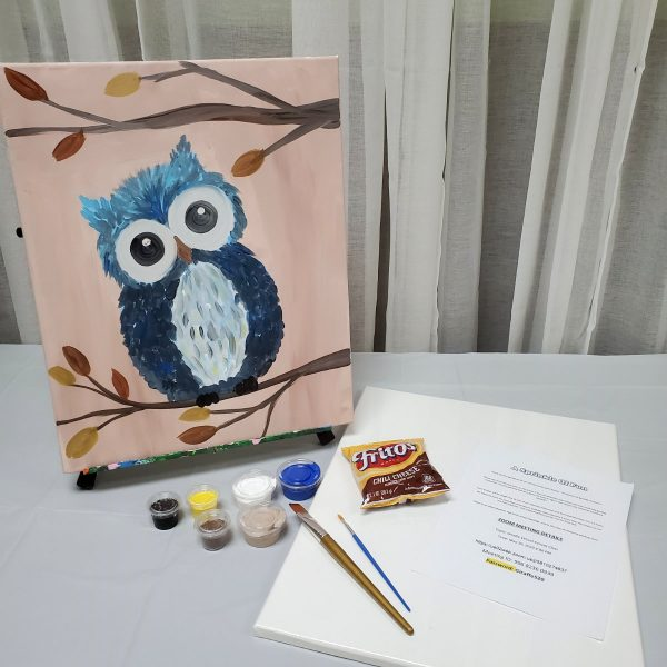 Owl Canvas Paint Art Kit