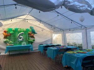 Dinosaur theme party in outdoor tent